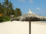 10 Foot Tahitian Palm Palapa - Round Single Pole