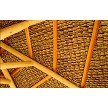 Option Example: Closeup of Thatch Save Net under Mexican Palm Thatch