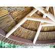 7' African Reed Palapa w/Pine Frame Option